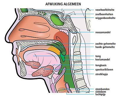 Afwijkingen Algemeen Medisch Spectrum Twente