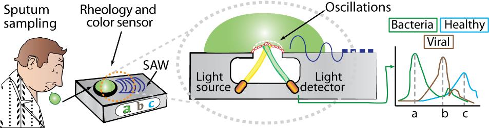 Visualisatie onderzoek met microsensor bij COPD